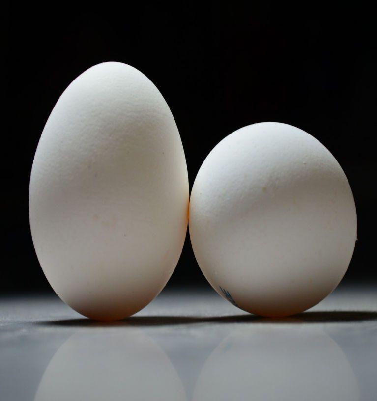 Mamy badać jaja. Tylko dlaczego dopiero teraz?