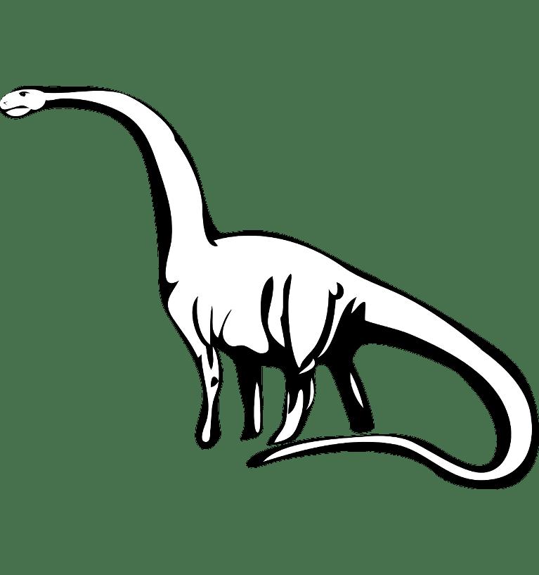 Pozycjonowanie long tail - czym jest pozycjonowanie na długi ogon?