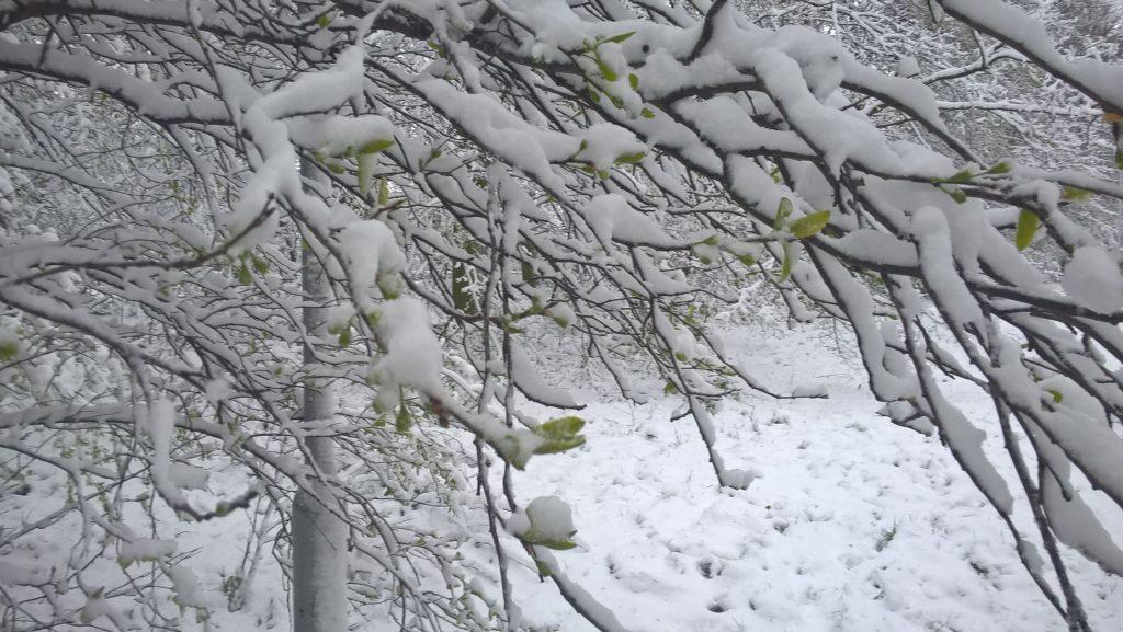 snieg w kwietniu