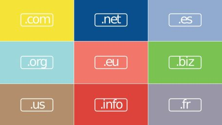 Na jakiej domenie warto stawiać zaplecze SEO?