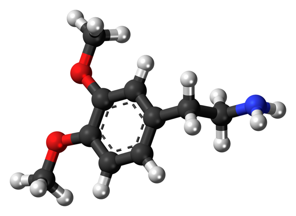 Pięć naturalnych metod, by podnieść swój poziom dopaminy